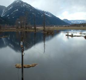 Arn Canal Drainage Improvements Study