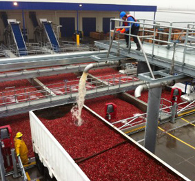 Ocean Spray Canada Cranberry Receiving Facility Water Systems