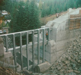 Whistler Creek Management & Debris Barriers