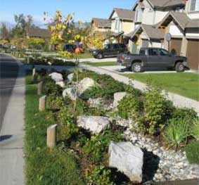 Stormwater Rain Gardens 102 – Top 10 Implementation and Maintenance Considerations