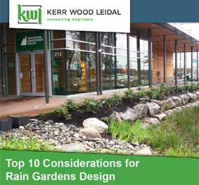 Top Ten Design Considerations for Rain Gardens
