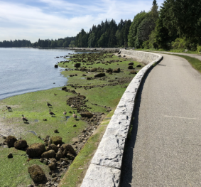 Stanley Park and English Bay Seawall Repairs